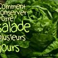3 astuces pour conserver la salade
